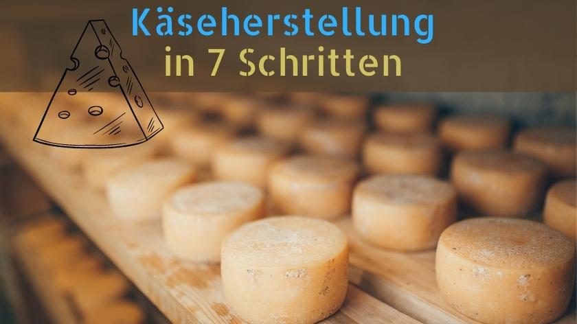 Käseherstellung in sieben Schritten